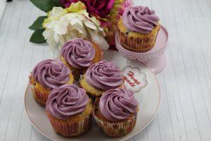 leckere Blaubeer Cupcakes